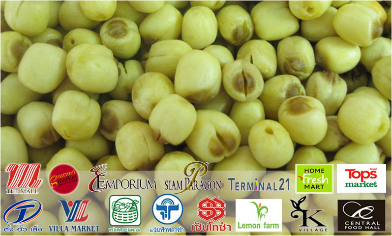 Fried Lotus Seeds Snack, dried crispy lotus seed, lotus seed export, thai lotus seed, tl tradewinds company limited, surin lotus seed, lotus seed product, lotus seeds sale thailand